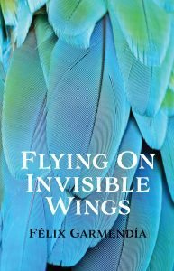 Flying On Invisible Wings by Felix Garmendia